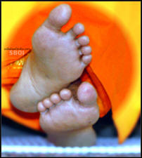 lotus-feet-sboi-wallpaper-sathya-sai-baba
