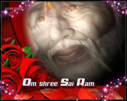 sai-baba-roses-shining-sun-of-our-life-guru