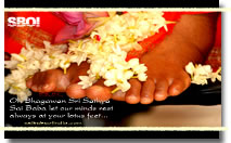 lords-lotus-feet-large size