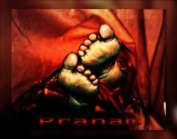 divine-lotus-feet-sri-sathya-sai-baba-pranam