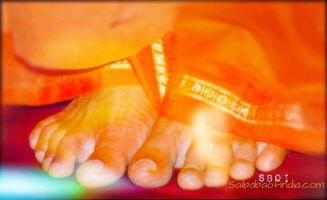 lotus feet of swami - sathyasai