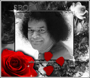Saiart - SAI-BABA-RARE-PHOTO-ROSE-PETALS-PUJA-DIVINE-LOOK