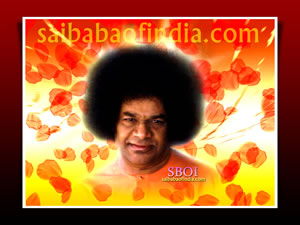 sboi-petals-of-love-sai-baba-photo-wallpaper