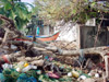 A village in Nagapattinam District after being ravaged by the tidal waves